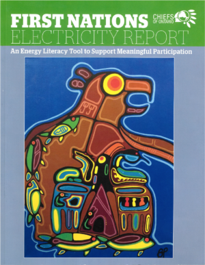 First Nations Electricity Report